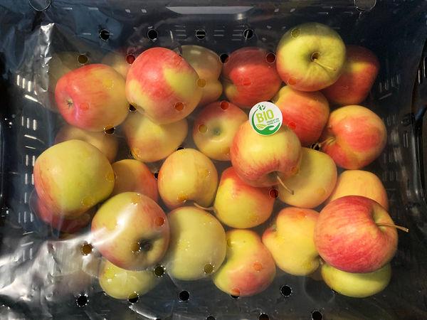 NOUVEAU : Panier de 5Kg de pommes jubilé BIO de notre Région en retrait du mercredi au dimanche